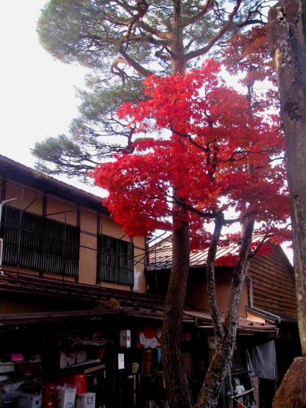 Takayama/高山