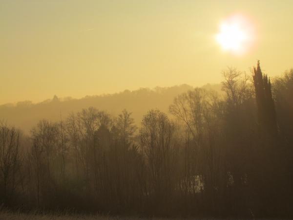 Un matin dans le gageacois