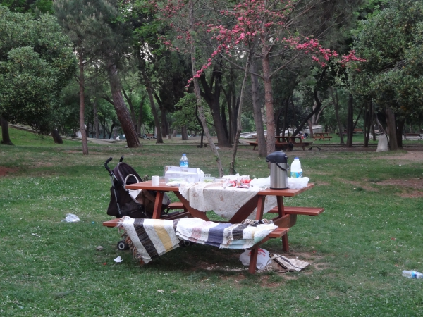 Un pique-nique à Yıldız